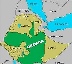 OGF Statement and Appeal to The International Community Requesting they support the Establishment of Oromia Transitional Government...
