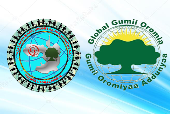 The Need for Establishing Oromo National Civic Institutions: The Cases of Global Gumii Oromia and Oromia Global Forum