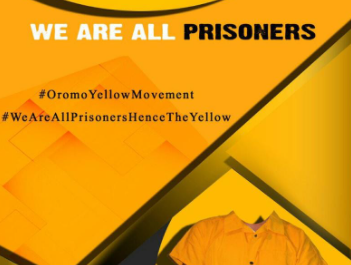 Urgent Press Release on Oromo Political Prisoners Hunger Strike and Appeal to International Institutions